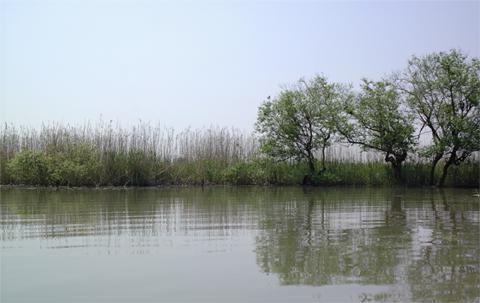 Oumisuigou