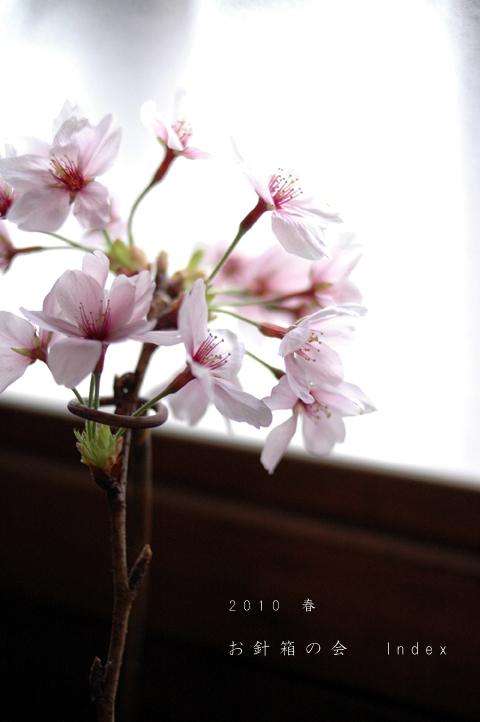 Sakuraindex
