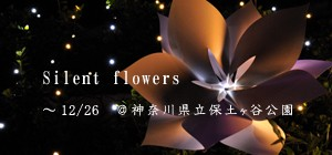 Silent_flower2010300_2